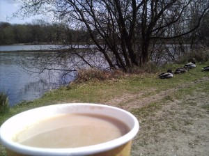 Tea at Hatfield Forest