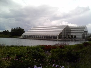 The Glasshouse from which the Glasshouse Cafe gets it's name