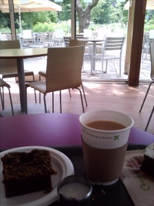 Tea and cake in the Glasshouse Cafe