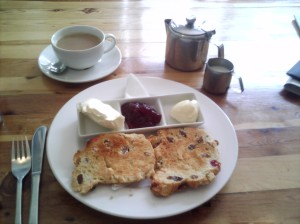 Cream tea at Cafe five, note the toasted scones